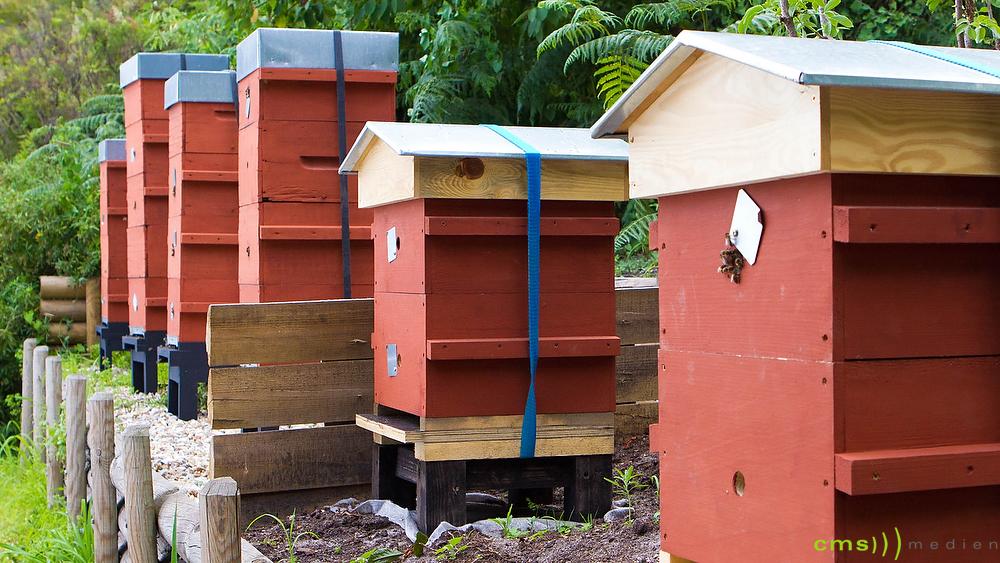 Landkreis Fürth: Bienenvölker entwendet
